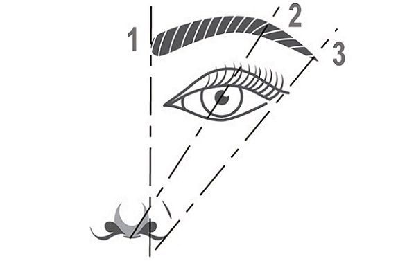 Перед коррекцией бровей следует определить их нужную форму