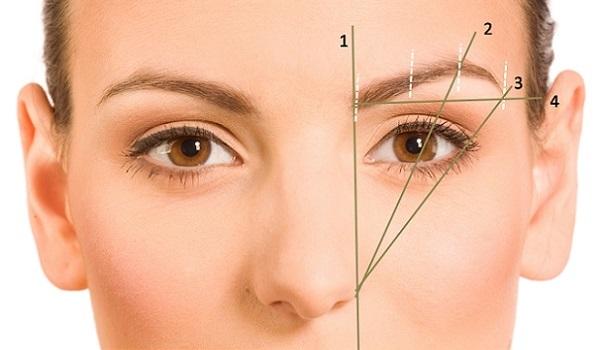 При нанесении макияжа необходимо сделать подходящий изгиб брови