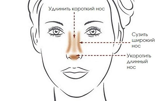 Нанесенные различными способами косметические средства помогут скорректировать любую форму носа