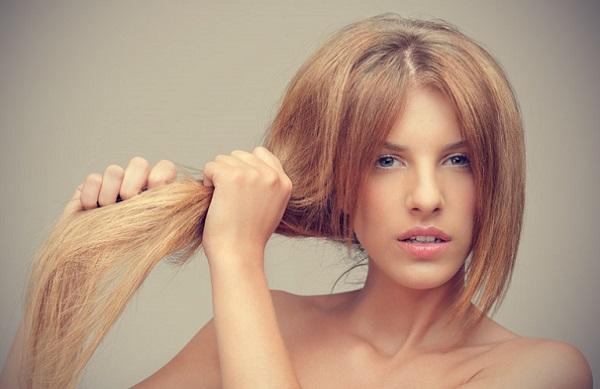 Чтобы избавить от сухости волос, следует использовать репейное масло вместе с яйцами и какао