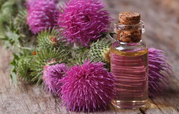 Репейное масло имеет богатый состав, от чего и используется в косметологии